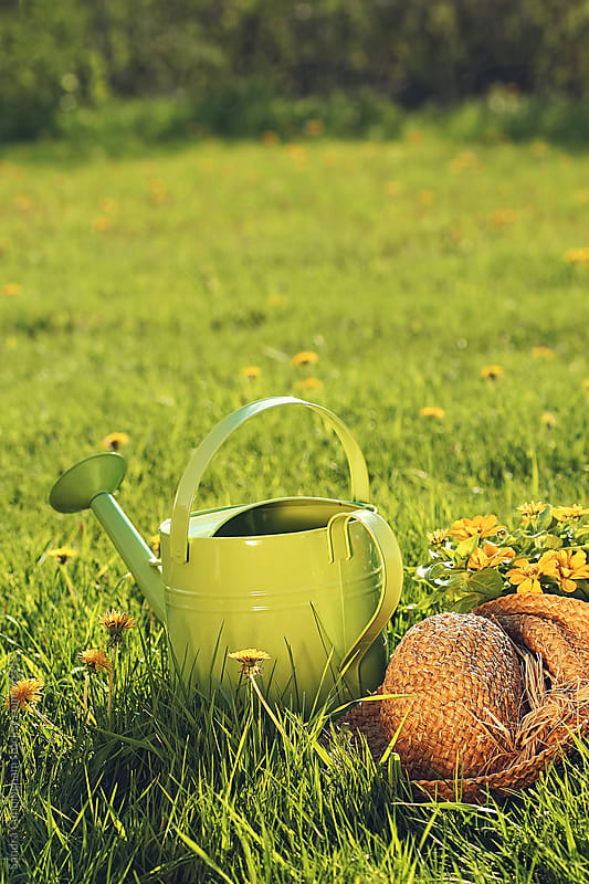 Watering can with garden hat in tall summer grass by Sandra Cunningham for Stocksy United