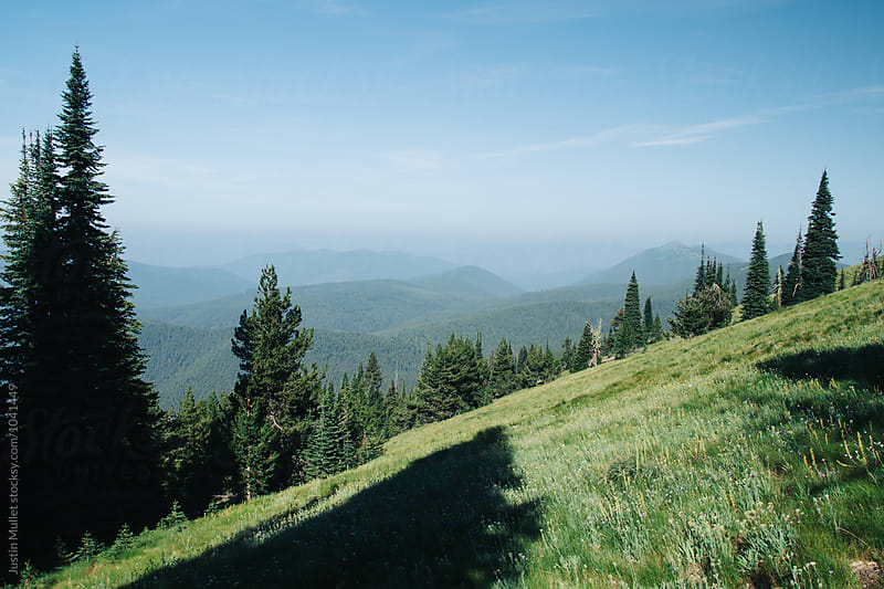 Alpine meadow on steep mountain side.  by Justin Mullet for Stocksy United