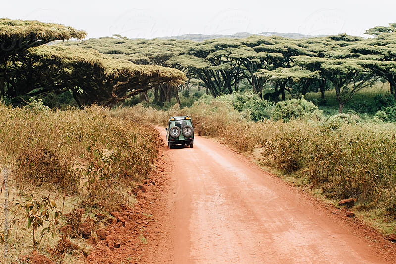 safari truck on dirt road in Tanzania by Cameron Zegers for Stocksy United