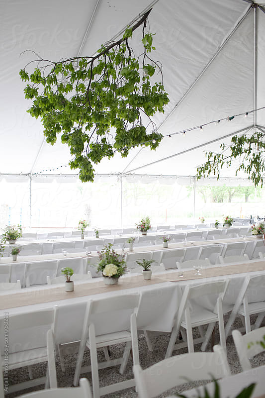 Bright White Farm Wedding by Anjali Pinto for Stocksy United