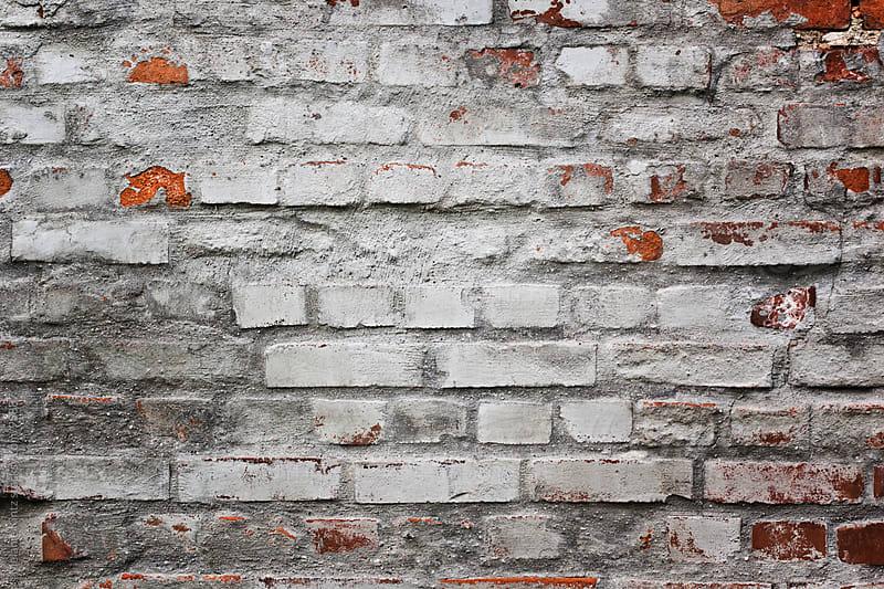 Background: old grey brickwall by Melanie Kintz for Stocksy United
