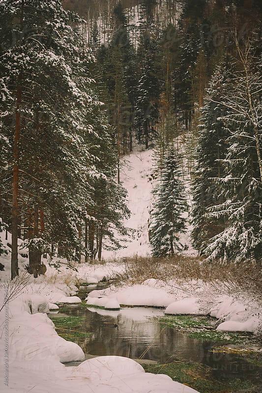 Dreamy Winter Landscape by Aleksandra Jankovic for Stocksy United