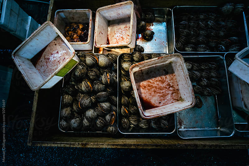 Metal and plastic trays containing clams and blood by Manuel Chillagano for Stocksy United