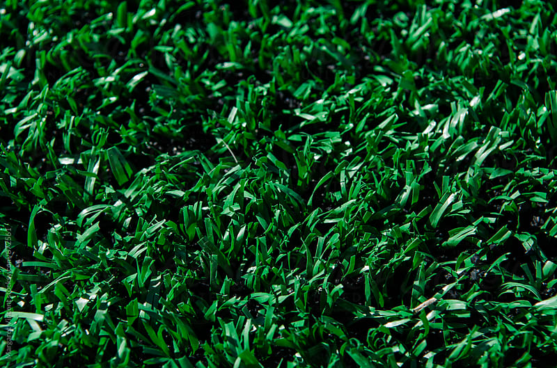 fake grass, up close by Margaret Vincent for Stocksy United