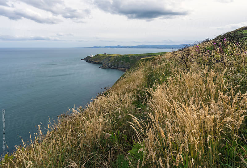 Howth, Ireland - Dublin Bay and Baily Lighthouse by Tom Uhlenberg for Stocksy United