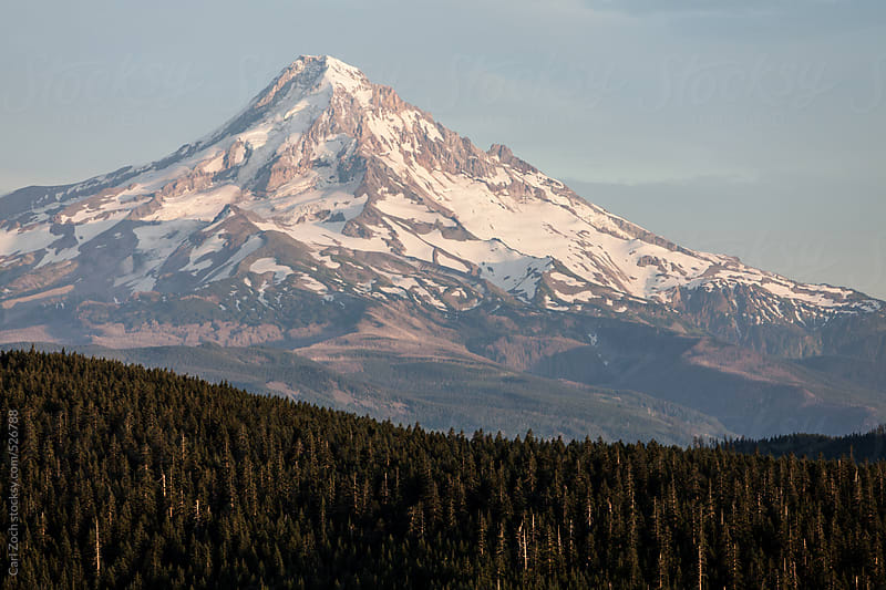 Mt Hood by Carl Zoch for Stocksy United