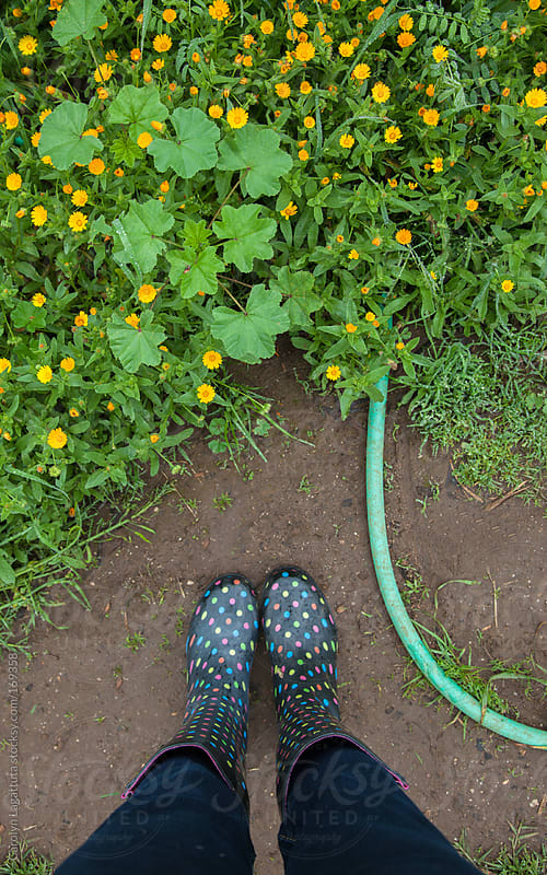 Woman standing in the garden amongst flowers, weeds and a hose with rubber boots on by Carolyn Lagattuta for Stocksy United
