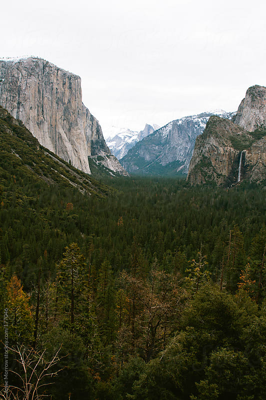 Yosemite Valley View by Jesse Morrow for Stocksy United
