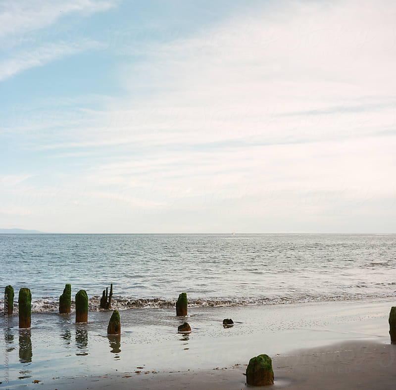 Old Broken Pier Supports in The Ocean by Briana Morrison for Stocksy United