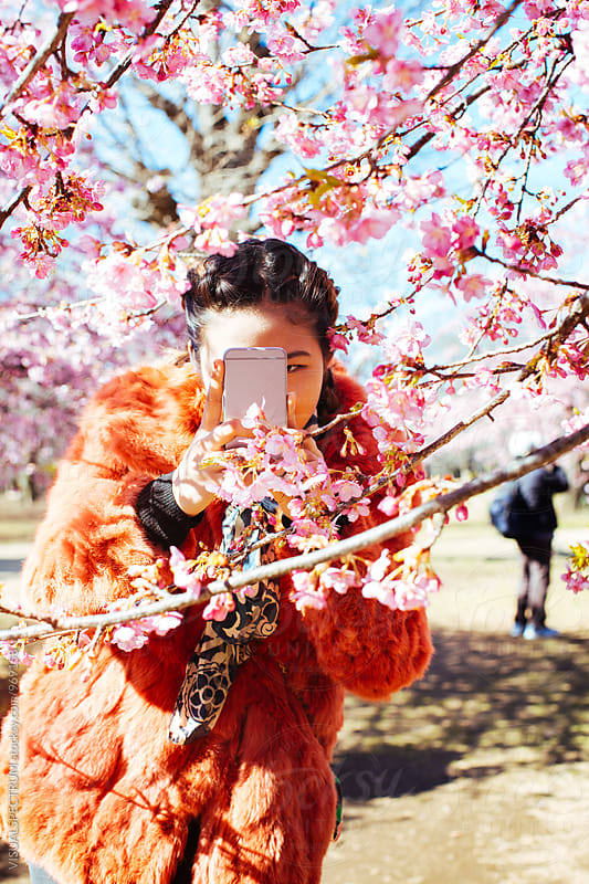 Pretty Young Japanese Woman Taking Cellphone Photo of Blossoming Sakura Tree by Julien L. Balmer for Stocksy United