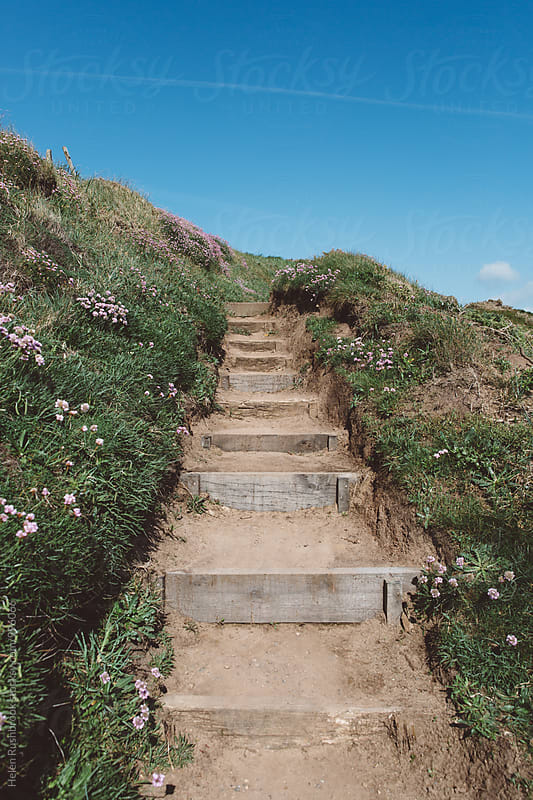 A stepped coastal path lined with the pink flowers of Armenia Maritima. by Helen Rushbrook for Stocksy United