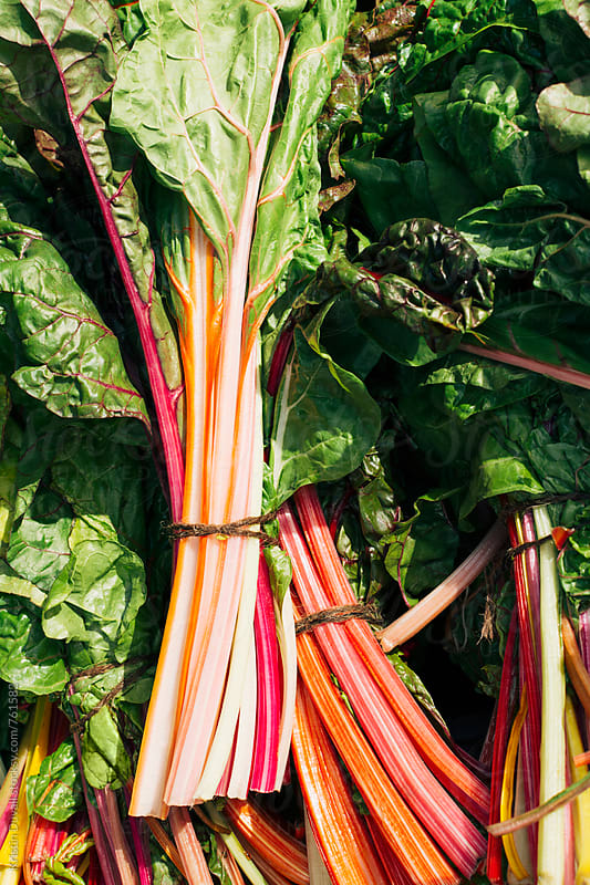 Rainbow chard by Kristin Duvall for Stocksy United