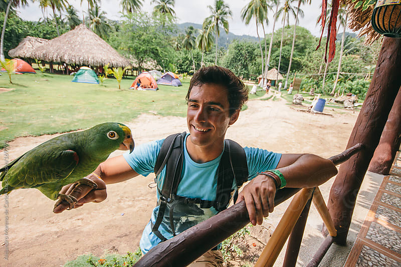 Young man with parrot on his hand in jungle, Tayrona, Colombia by Alejandro Moreno de Carlos for Stocksy United