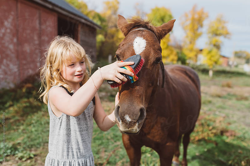 Young girl grooming her pony by Carey Shaw for Stocksy United