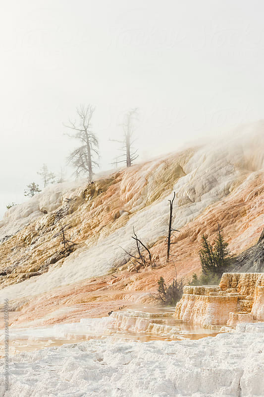 Mammoth Hot Springs by michela ravasio for Stocksy United