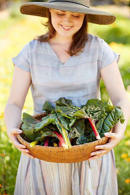 Woman farmer holding basket of chard greens from garden by Trinette Reed for Stocksy United