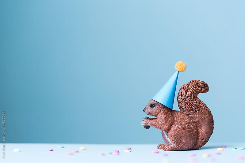 Toy squirrel wearing a party hat by Ruth Black for Stocksy United