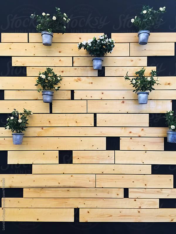 Decorative presentation with plants covering a front wall by Leandro Crespi for Stocksy United