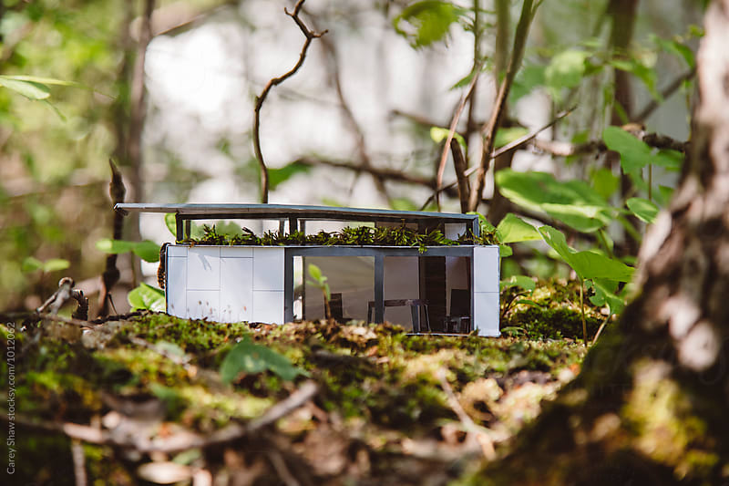 Handmade modern tiny house in forest  by Carey Shaw for Stocksy United