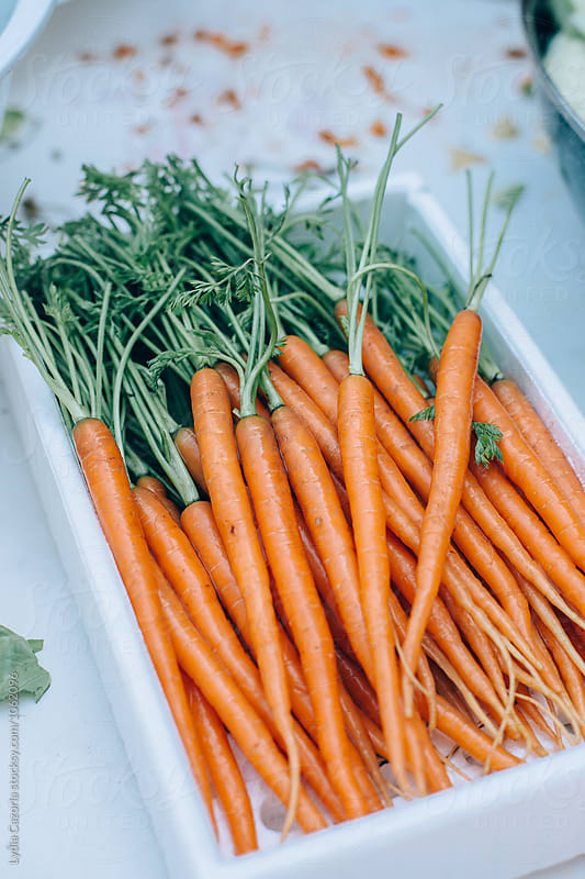 carrots box by Lydia Cazorla for Stocksy United