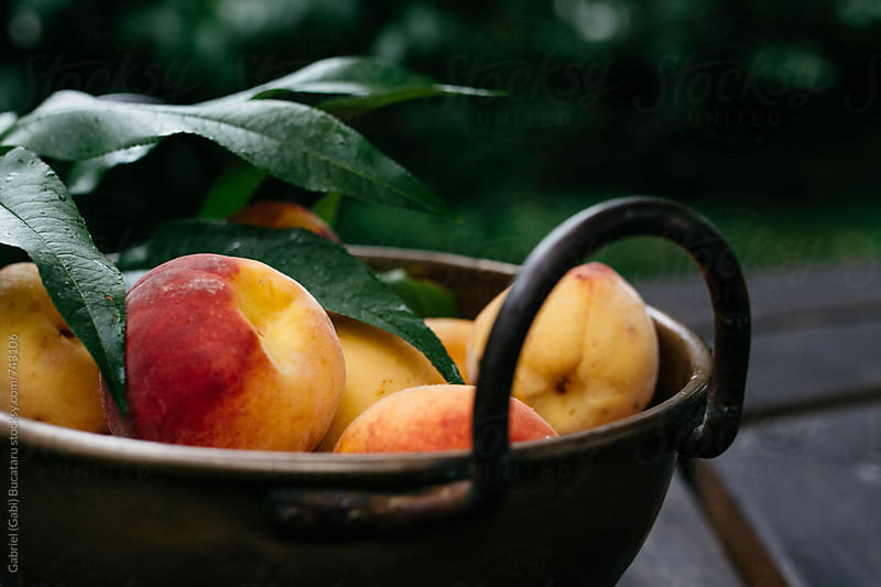 Freshly picked homegrown peaches in a brass bowl by Gabriel (Gabi) Bucataru for Stocksy United