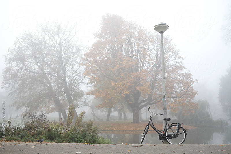 Vondelpark, Amsterdam in the mist in autumn by Rene de Haan for Stocksy United