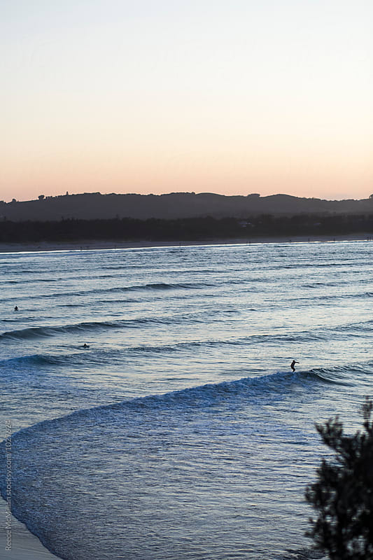 Surfers riding waves into shore, Byron Bay by Reece McMillan for Stocksy United