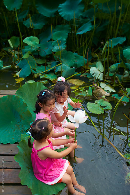 three lovely little girls sitting by the  lotus pond by Bo Bo for Stocksy United