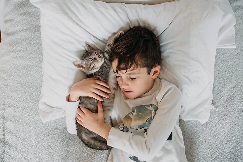 Cat nap by Melanie DeFazio for Stocksy United