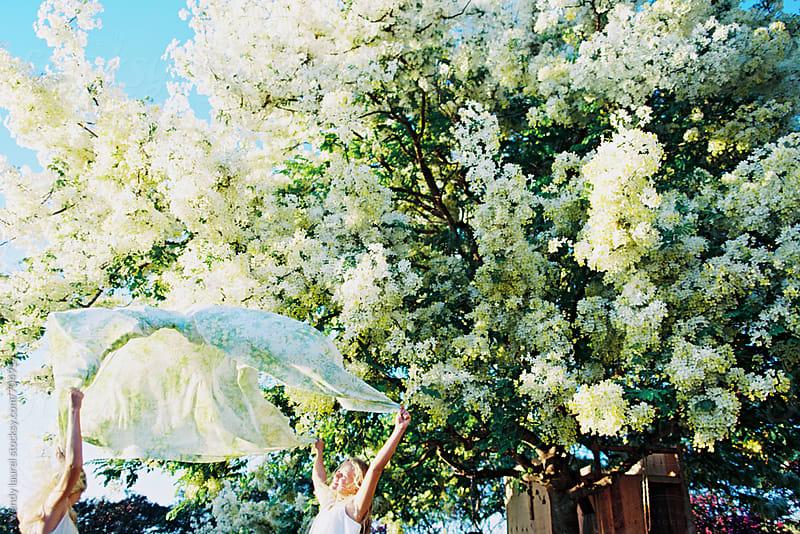 two blonde girls throwing vintage floral sheet in air under flowering shower tree  by wendy laurel for Stocksy United