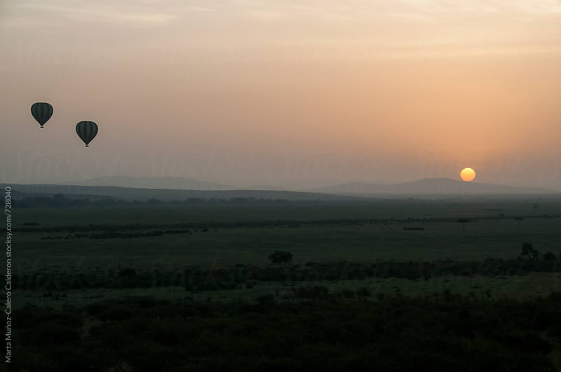 Hot Air Balloons At Sunrise at Kenia by Marta Muñoz-Calero Calderon for Stocksy United