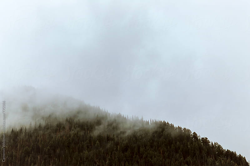 Misty Mountain Top by Cameron Whitman for Stocksy United