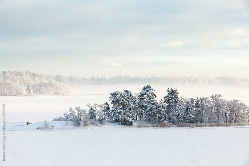 A frozen landscape by Jonatan Hedberg for Stocksy United