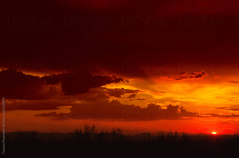 Red Sunset In Desert With Clouds by Tamara Pruessner for Stocksy United