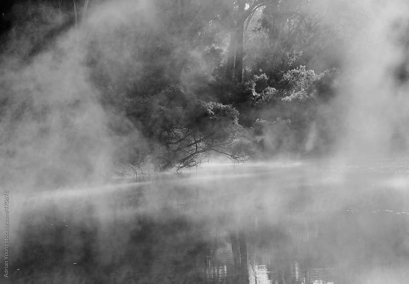 Misty River Banks by Adrian P Young for Stocksy United