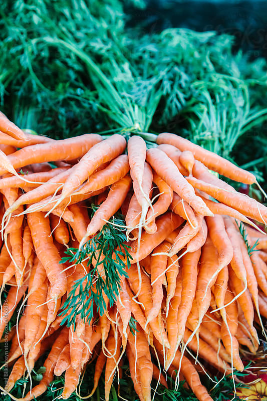 A bunch of fresh, local, organic carrots for sale at an outdoors farmers market by Mihael Blikshteyn for Stocksy United