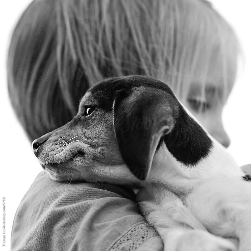 Girl and Beagle Puppy by Thomas Hawk for Stocksy United