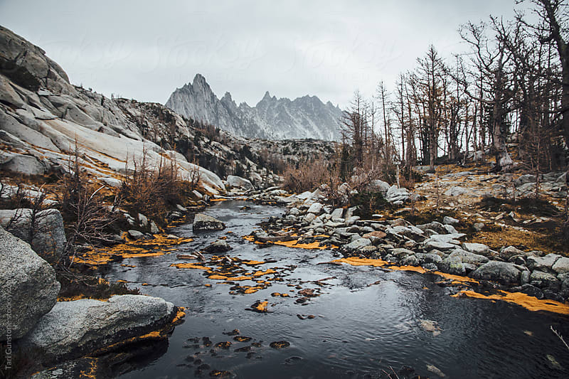 Rugged mountainous landscape in Autumn by Tari Gunstone for Stocksy United