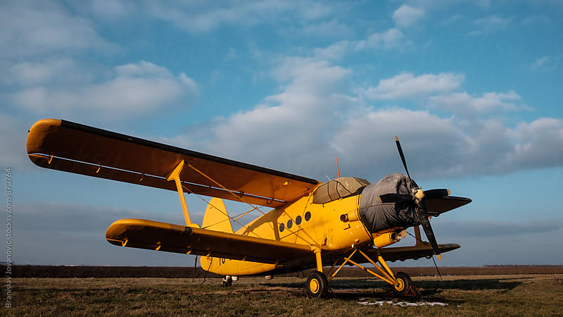 Old Yellow Airplane on the Field by Branislav Jovanović for Stocksy United