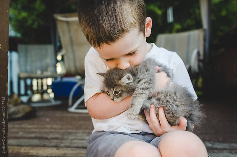 Young child holding and kissing a kitten by Lindsay Crandall for Stocksy United