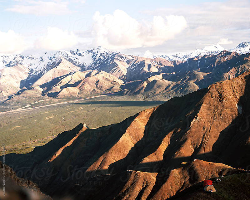 Denali Nation Park, Alaska by Adam Naples for Stocksy United