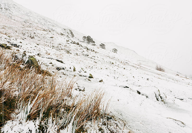 Heavy snow falling on a mountainside. Cumbria, UK. by Liam Grant for Stocksy United