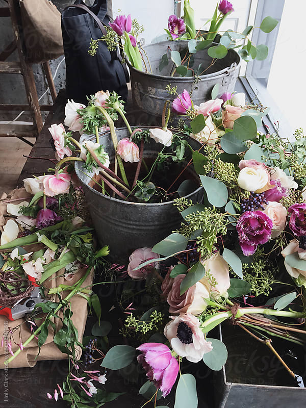 Buckets of flowers for arranging in a flower shop by Holly Clark for Stocksy United