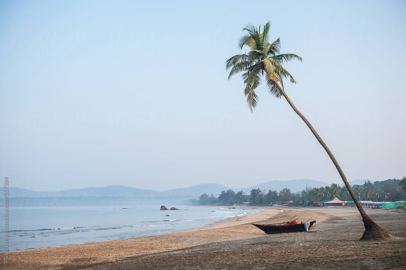 coconut tree bent over a tropical beach  by RG&B Images for Stocksy United