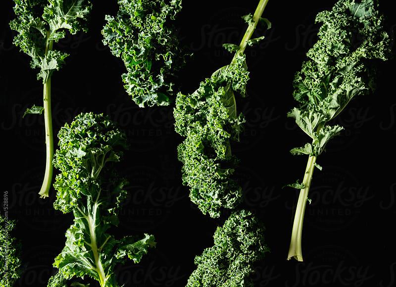 Raw Kale on Black by Jeff Wasserman for Stocksy United