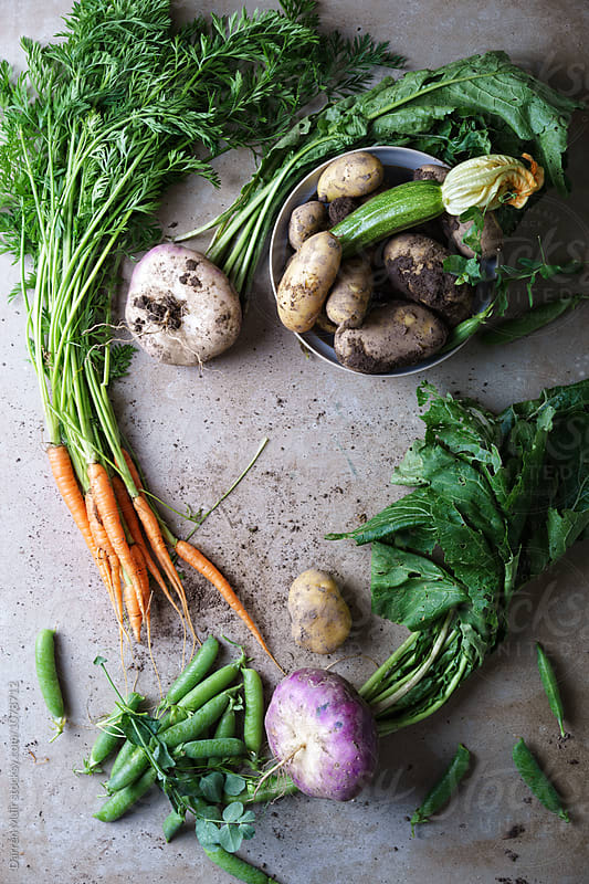 Fresh vegetables harvested from the garden. by Darren Muir for Stocksy United