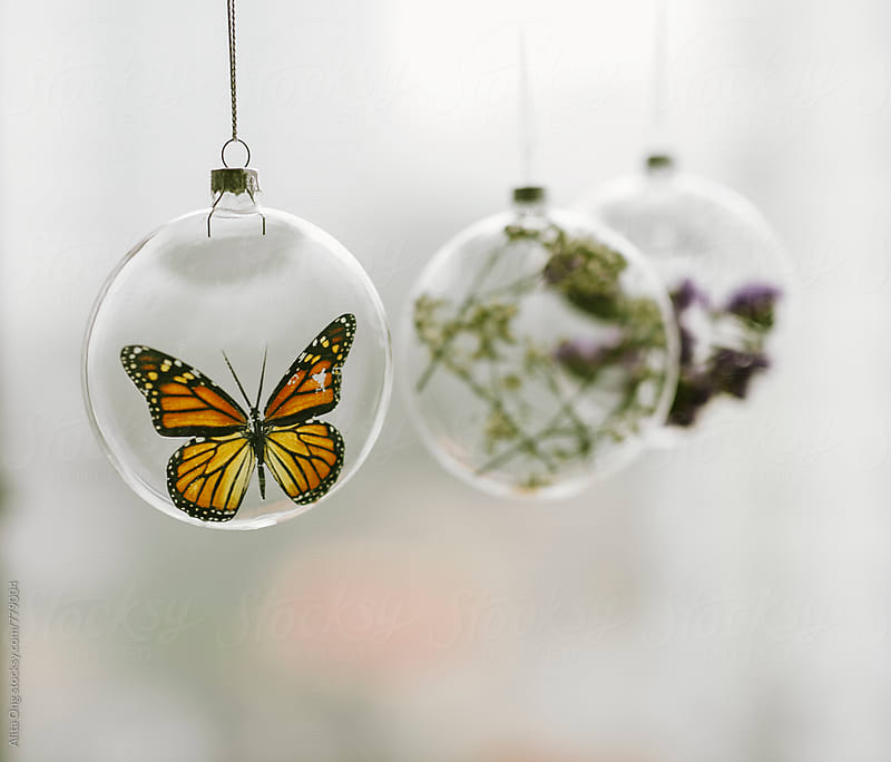 Beautiful faux buttefly Christmas bauble by Alita Ong for Stocksy United
