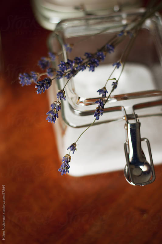 Baking with Lavender by Helen Rushbrook for Stocksy United
