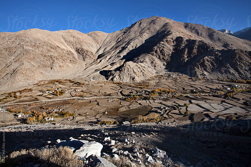 Cultivating land  in Ladakh,India by PARTHA PAL for Stocksy United
