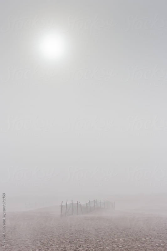 Sand Fence on beach in dense fog by Melanie Kintz for Stocksy United